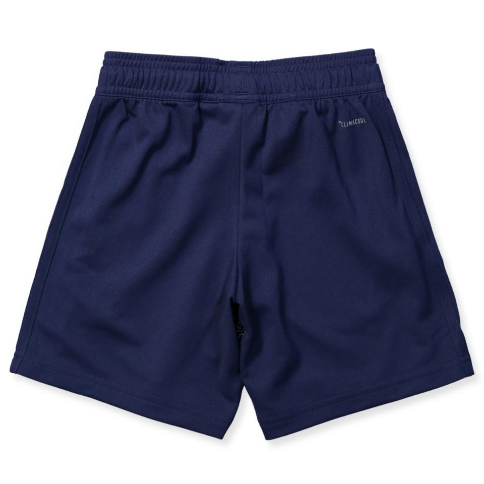 Navy Condivo shorts