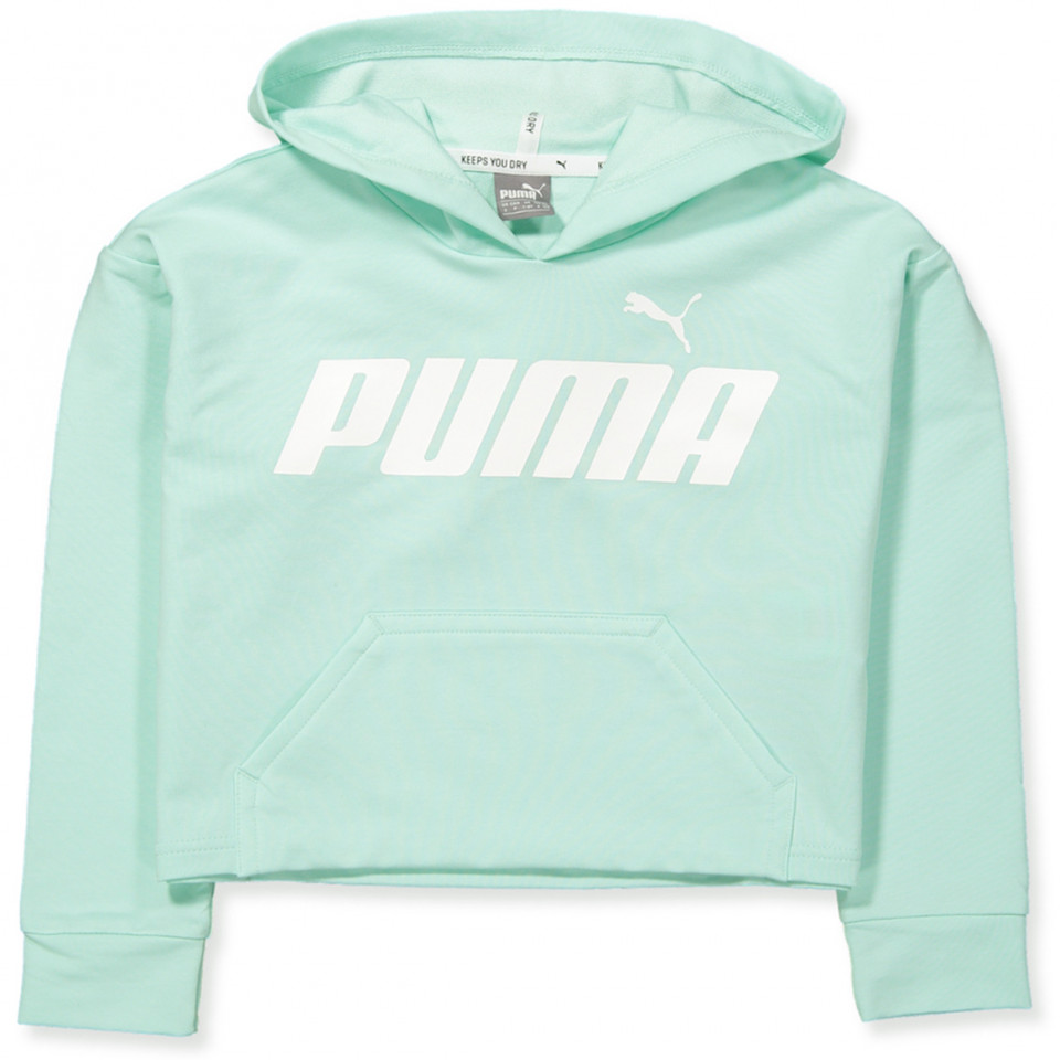 superior materials new authentic sold worldwide Mint green sweatshirt