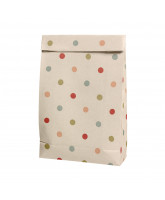 Gift bag - multi dots