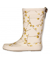 Longan fruit wellies