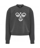 Sweatshirt hmlCINCO
